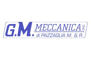 G.M. MECCANICA - LAVORAZIONI MECCANICHE DI METALLI E MATERIE PLASTICHE - 1