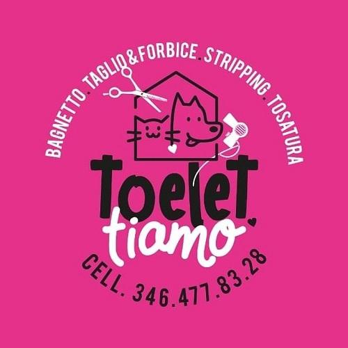 TOELETTIAMO DI ELISA PIAZZA - TOELETTATURA CANI E GATTI ANCHE A DOMICILIO - 1