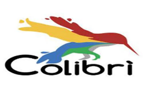 IMPRESA DI PULIZIE COLIBRI - 1