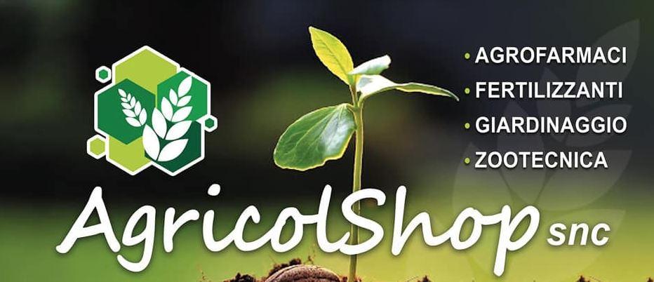 AGRICOLSHOP| CONCIME PER AGRICOLTURA PROMOTORE DI CRESCITA LEILI| FUNGICIDI INSETTICIDI ERBICIDI FITOREGOLATORI GREEN - 1