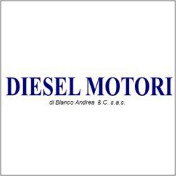 DIESEL MOTORI-OFFICINA MECCANICA RIPARAZIONE AUTOVETTURE E VEICOLI INDUSTRIALI E AGRICOLI - 1