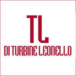 TL DI TURBINE LIONELLO -  SISTEMI DI AUTOMAZIONE CANCELLI - 1