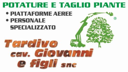 TARDIVO CAV. GIOVANNI & FIGLI - GIARDINAGGIO POTATURE E TAGLIO PIANTE - 1