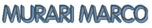 IDRAULICO MURARI MARCO - 1