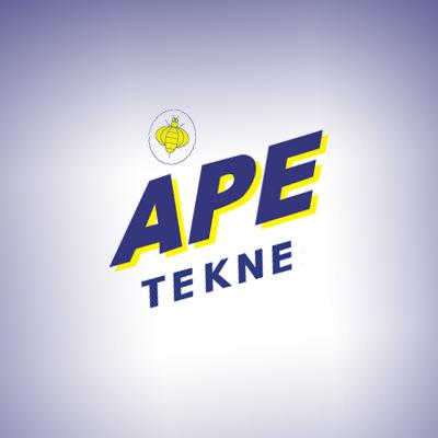 APE TEKNE - INSTALLAZIONE MANUTENZIONE ANTIFURTO