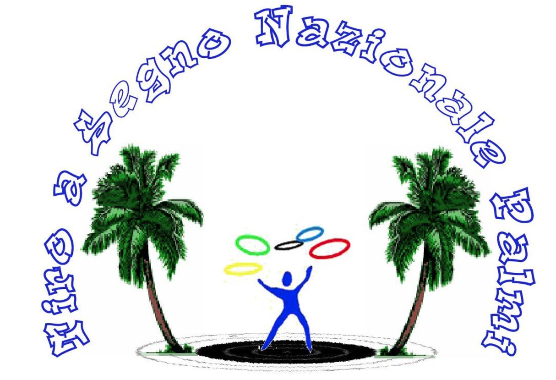 TIRO A SEGNO NAZIONALE PALMI CARABINE PISTOLE RIVOLTELLE - 1